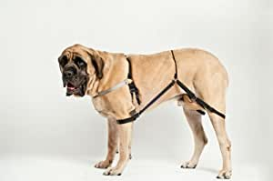 Jump Stop No Jump Dog Harness, Large L3 (Silver)