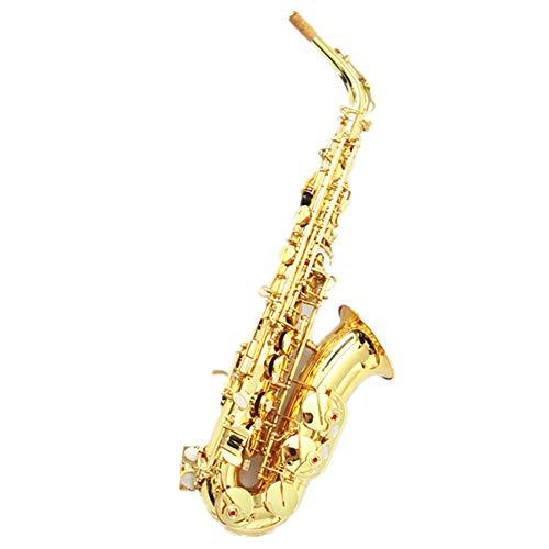 Bass Sax Cases
