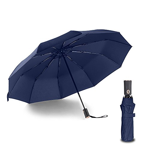 The Best Umbrella: Amazon.com