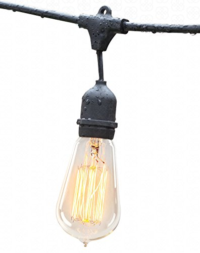 Deneve Outdoor String Lights (48ft) with Edison Bulbs - Heavy - Import It All