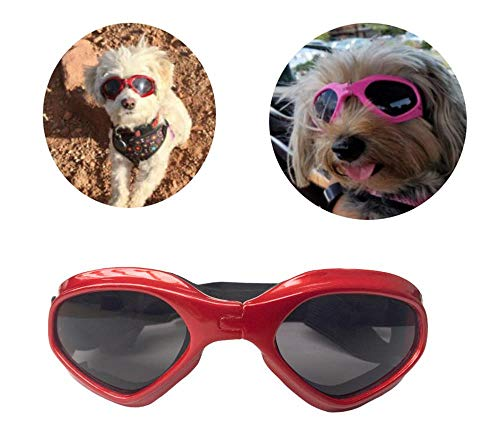 PetBoBo Pet Waterproof Windproof Anti-Fog Eye Protection Goggles, Stylish Pet/Dog UV Goggles Sunglasses Waterproof Protection Sun Glasses for Dog from PetBoBo