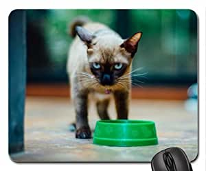 WMSHOP Don't you dare!!! Mouse Pad, Mousepad (Cats Mouse Pad)