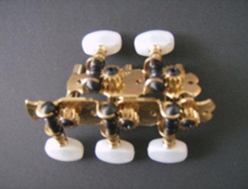 Clavijero Timple Canario