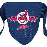 Hunter MFG Cleveland Indians Mesh Dog Bandana, Small