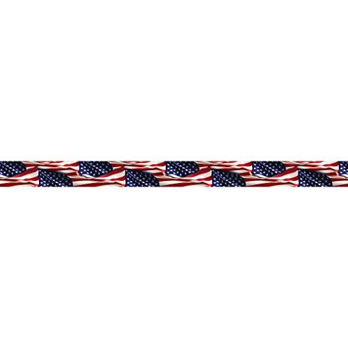 Edupress Patriotic Straight Border Trim (EP63091)