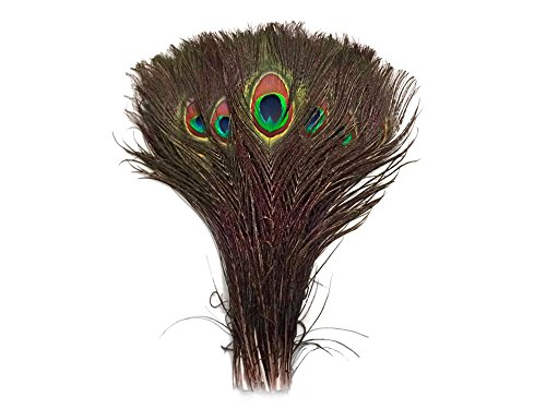 (Moonlight Feather | 50 Pieces Natural Green Feathers - 10
