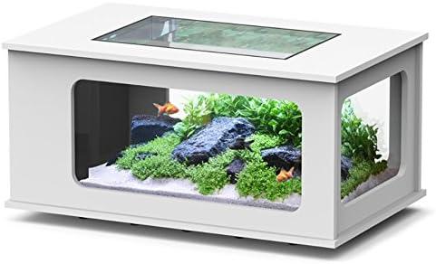 Acuario mesa LED 100 x 63 cm), color blanco: Amazon.es: Productos ...