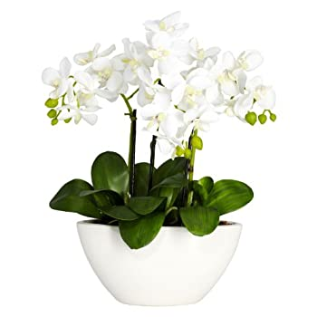 Nearly Natural 4804 Phalaenopsis Silk Flower Arrangement, White