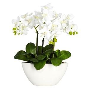 Nearly Natural 4804 Phalaenopsis Silk Flower Arrangement, White 84