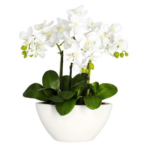 Nearly Natural 4804 Phalaenopsis Silk Flower Arrangement, ()