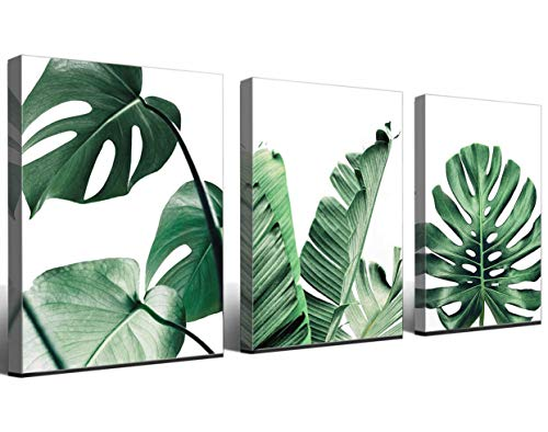 Canvas Wall Art Green Leaf Simple Life Painting Dathroom Wall Decor Monstera Plant 3 Pieces Framed Canvas Pictures Contemporary Watercolor Artwork Ready to Hang for Home Decoration Office Wall Decor ()