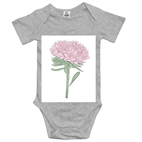 Separate Asters Baby Romper Short Sleeve Onesies Soft Bodysuits for Baby (Aster Suit)