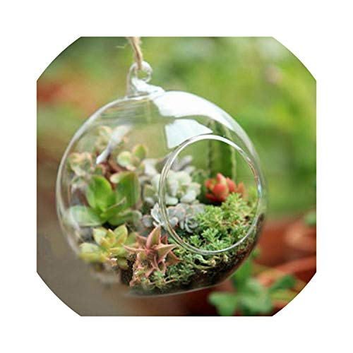 shiny star show Hanging Gl Vase Terrarium Ball Globe Shape Clear Flower Plants Container Ornament Micro Landscape DIY Wedding Home Decor,White
