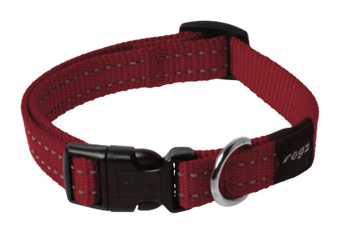Reflective Dog Collar for Medium Dogs, Adjustable from 12-17 inches, Red (Abc 13 Days Of Halloween)