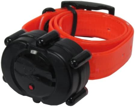 DT Systems Micro-IDT Remote Dog Trainer Add-On Collar in Orange
