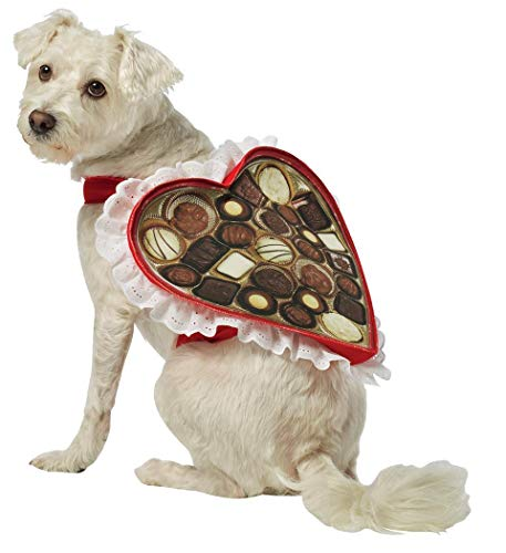 Rasta Imposta Chocolate Box Dog Costume, X-Large