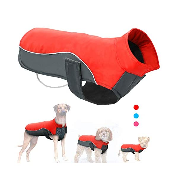 Didog Reflective Dog Winter Coat Sport Vest Jackets Snowsuit Apparel – 8 for Small Medium Large Dogs