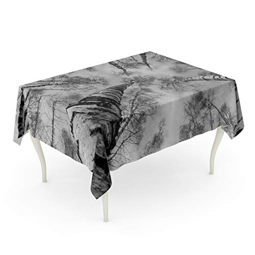 Grove L-desk Park (Semtomn Decorative Tablecloth Waterproof Printed Polyester Oil-Proof Blue Nature The Tops of Birch Trees Against Sky Black and White Russia Forest Rectangle Table Cloth 60 x 84 Inch)