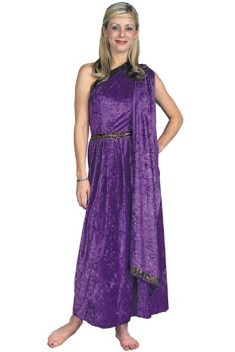 RG Costumes Women's RG Roman Toga Adult Purple Long Costume, One -