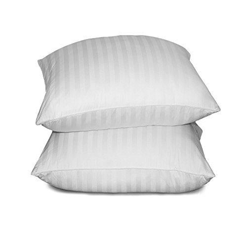 Blue Ridge Home Fashion 500 Thread Count Cotton Damask Siberian White Down Pillow, Jumbo, White