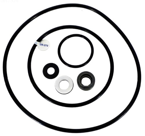 Pentair PP4000 Seal Gasket Replacement Kit Sta-Rite Pool and Spa Pump