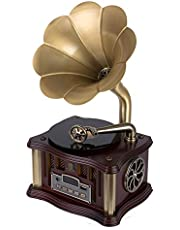 Mini Retro Gramophone Bluetooth 4.2 Double Track USB Player FM Radio Remote Control Two HiFi Speakers Phonograph (Color : Style 2)