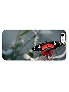 3d Full Wrap Case for iPhone 5/5s Animal Black And Red Butterfly
