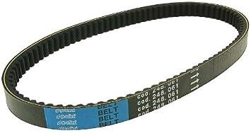 Keilriemen Polini Kevlar Maxi Belt f/ür Kymco MXU 250 S