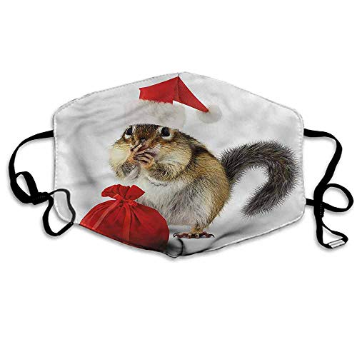 Christmas Dust Mouth Mask Chipmunk in Santa Hat for Men and Women W4