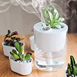 DCMEKA  USB Cool Mist Humidifier, Mini Ecological Humidifier 320ML 50ML/h with Timed Auto Shutdown and Warm White Light, Desk Humidifier Best for Office/Bedroom/Living Room/House,Quiet Operation