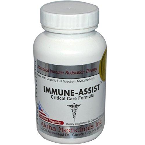 Aloha Medicinals - Immune Assist Critical Care Formula - Potent Immune Support - Certified Organic Mushroom Supplement - 500mg - 84 Vegetarian Caps