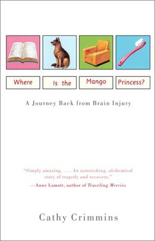 Princess Game System (Where is the Mango Princess? A Journey Back from Brain Injury)