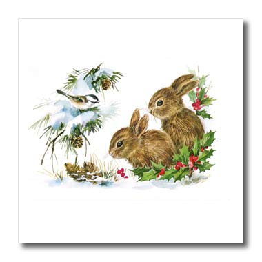 3dRose Cassie Peters Vintage - Vintage Winter Rabbits - 8x8 Iron on Heat Transfer for White Material (ht_298897_1) ()