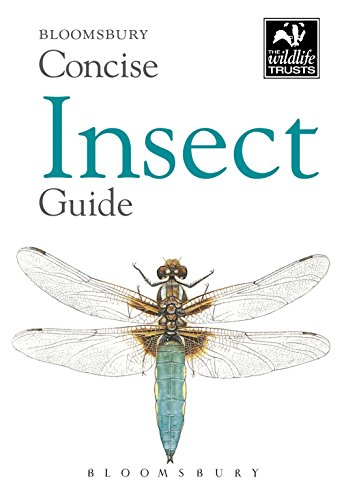 Concise Insect Guide (The Wildlife Trusts)