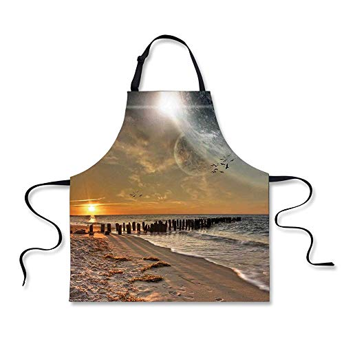 iPrint BBQ Apron,Space,Magical Solar Eclipse on Beach Ocean with Horizon Sun Moon Globe Gulls Flying View,Cream Orange, Apron.29.5''x26.3'' by iPrint