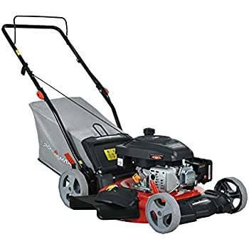 Amazon.com : Poulan Pro PR450N20S Side Discharge Push Mower ...