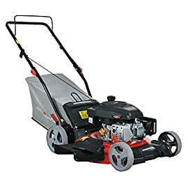 PowerSmart DB2321P Lawn Mower, Black and red 51 Powered by 161 cc engine delivering the right amount of power in a compact, lightweight package Easy pull starting 3-In-1 bag, side discharge and mulching capability allows you to spread grass clippings to the side, returning key nutrients to your lawn so your grass can grow healthy and thick