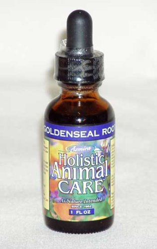 Goldenseal-Extract