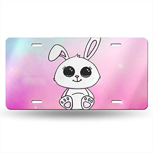 (BaPaLa Cute Big Eyes Bunny Funny License Plate Decorative Front Plate 6