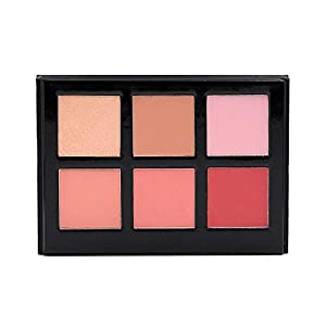 Crown Blush Highlighter Professional Makeup Palette (Exposed 1 Blush Highlighter)