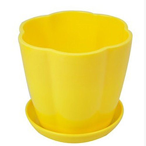 Cupcinu Self Watering Planters Coloured Plastic Flower Pot with Drainage Tray for Home Balcony Garden Office Desk Flower Shop Decoration Size 11cmX9cmX8cm (Yellow)