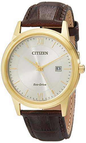 Citizen Men's AW1232-04A Eco-Drive Gold-Tone Watch with Brown Leather Band