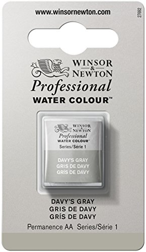 Winsor & Newton 101217 Professional Water Color Tube with Half Pan, Davy's (Cotman Watercolor Tubes)