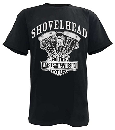 shovelhead engine - 9