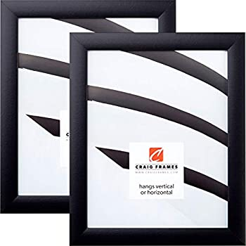 Amazon.com - ArtToFrames 24x36 inch Black Picture Frame ...