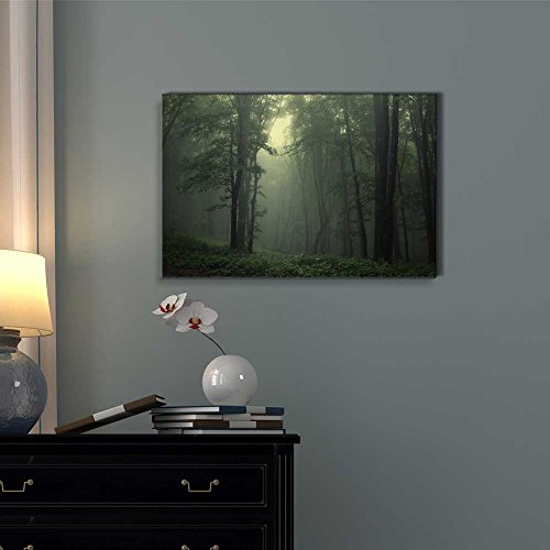 Beautiful Scenery Landscape a Beam of Light in a Natural Foggy Green Forest Wall Decor ation