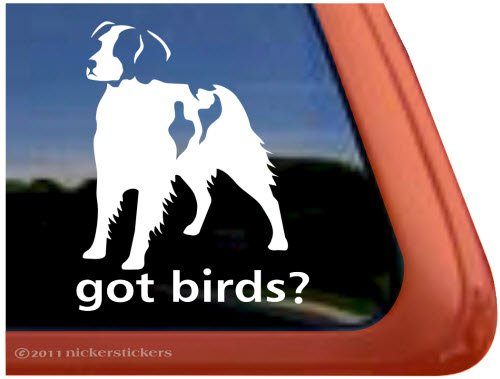 GOT BIRDS? ~ American Brittany Dog Vinyl Window Auto Decal Sticker