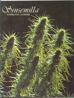 Sinsemilla: Marijuana Flowers Book by Richardson Jim