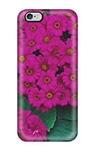 Fashion Protective Hydrangeas & Cinerarias Case Cover For Iphone 6 Plus