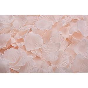 La Tartelette Silk Rose Petals Wedding Flower Decoration (100 Pcs, Champagne) 10